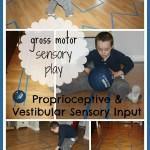 proprioceptive sensory seeking line play activity