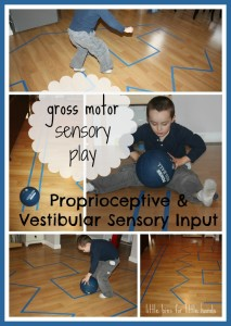 proprioceptive sensory seeking line play activity