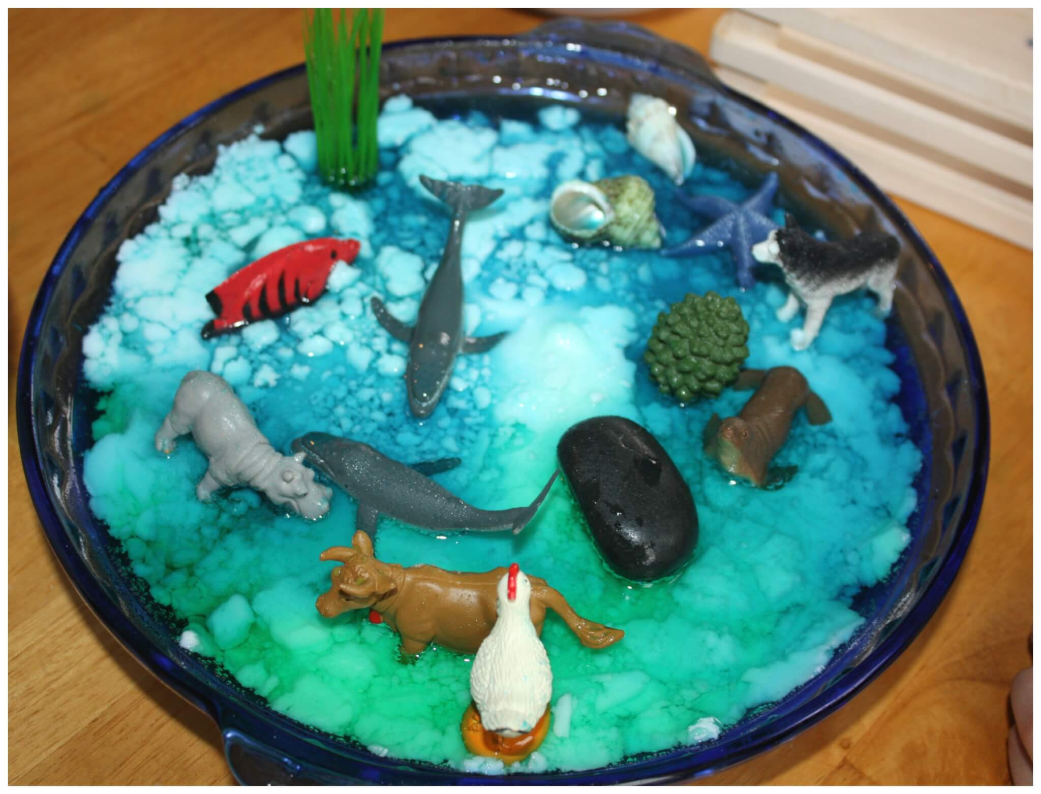 Earth Day Science Baking Soda Science Experiment