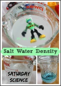 salt water density science experiment