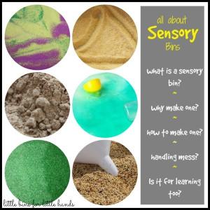 All About Sensory Bins