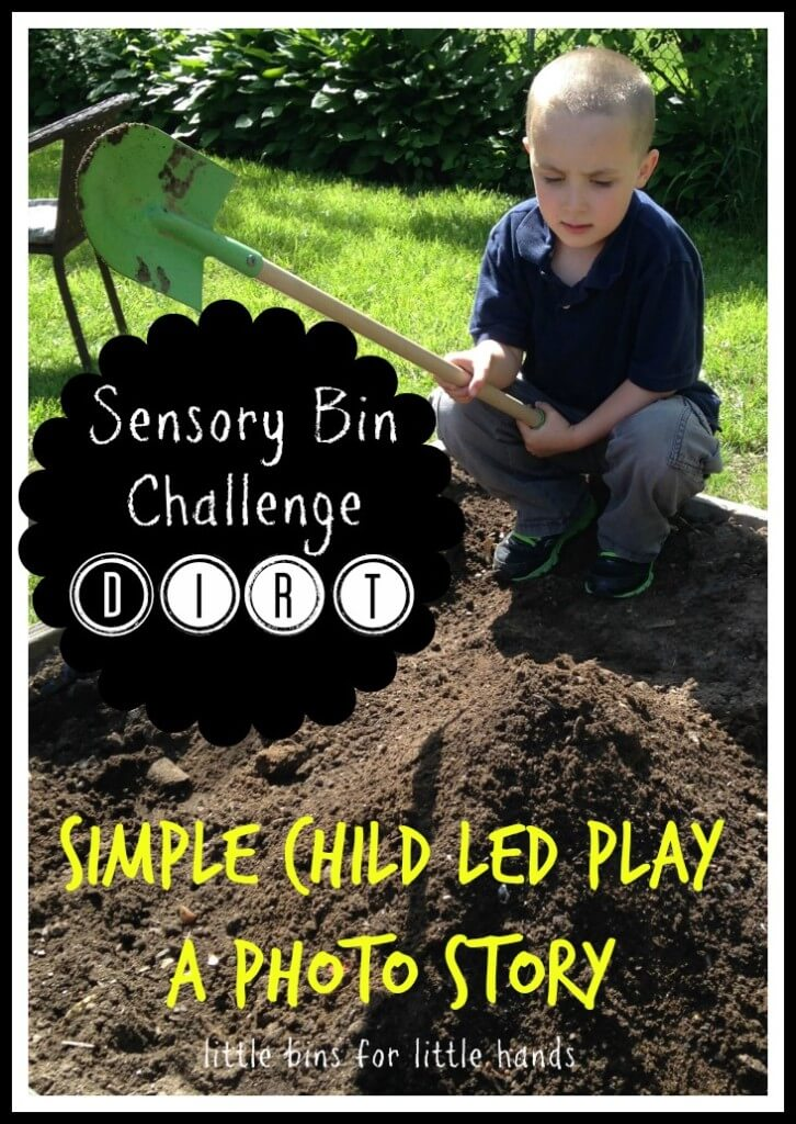 Dirt Sensory Bin Challenge Activity