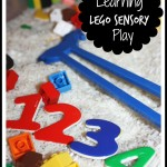 Lego Sensory Bin Play Activity