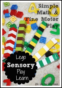 Lego Sensory Bin math And Fine Motor Play