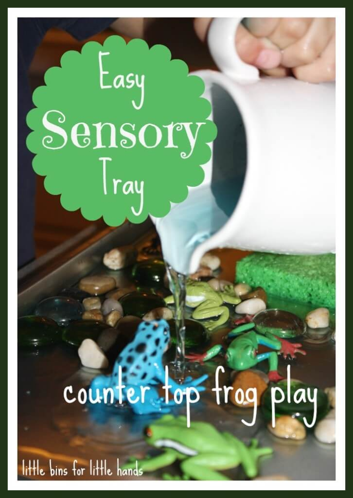 Sensory Tray Play Activity
