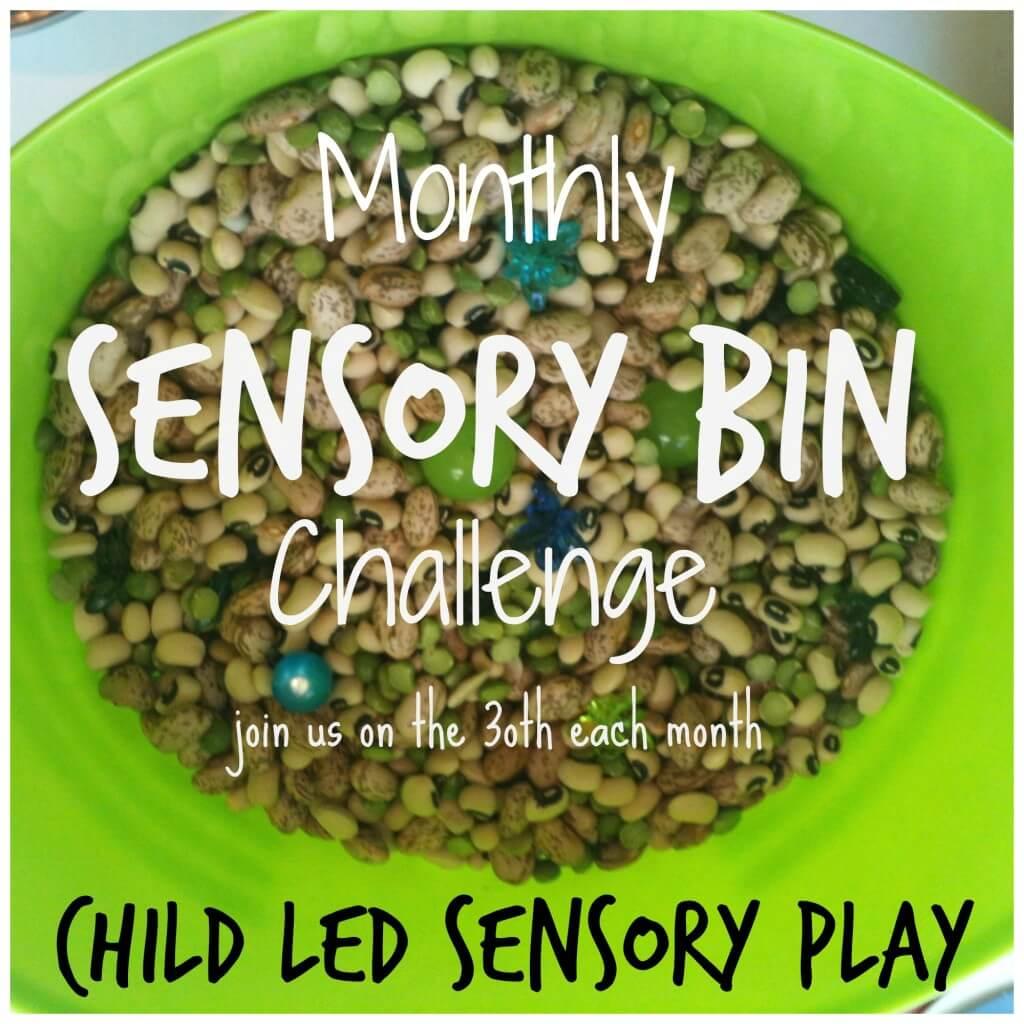 monthly sensory bin challenge