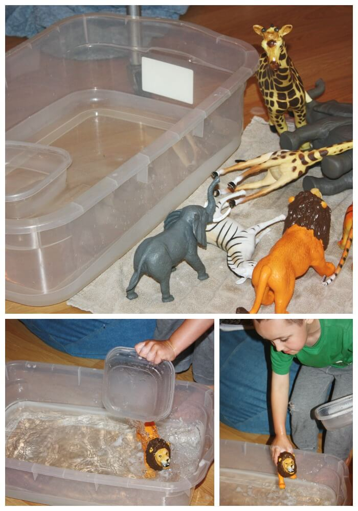Animal Wash Sensory Play Rinse and Dry
