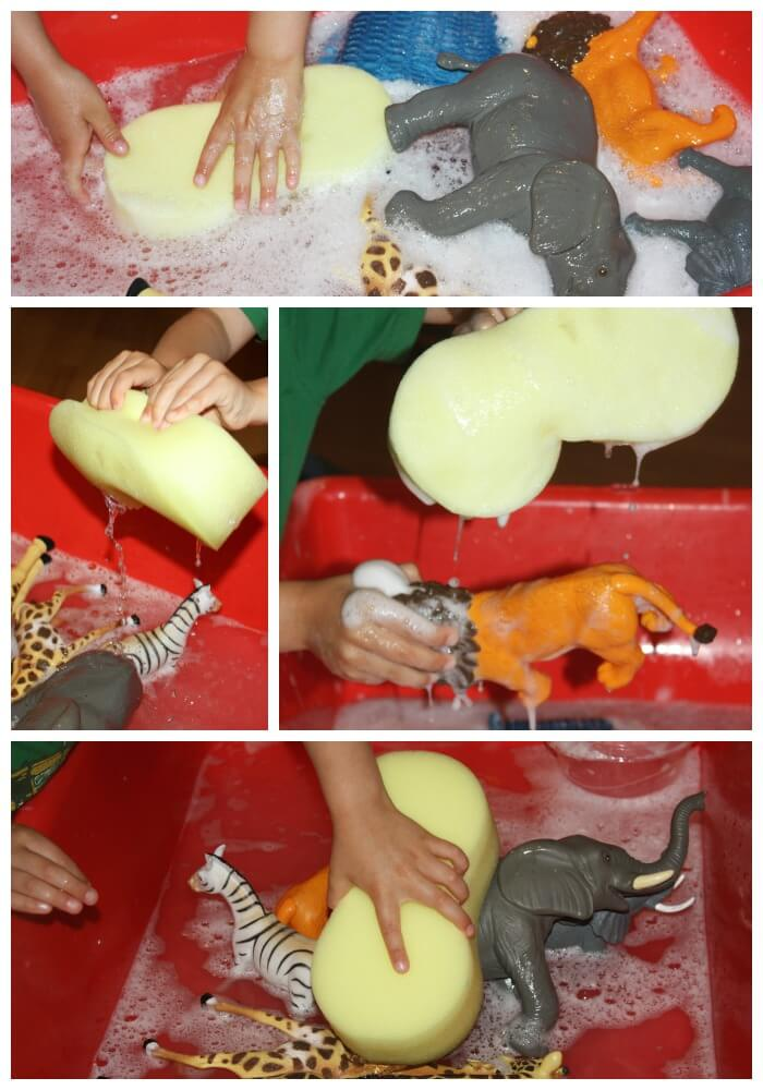 Animal Wash Sensory Play