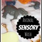 Animal wash sensory play activity