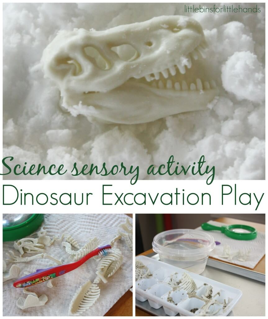 Dinosaur Excavation Science Sensory Play and Fine motor Skills