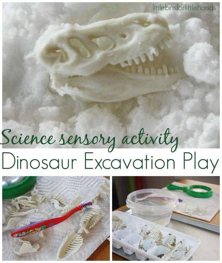Dinosaur bones activity