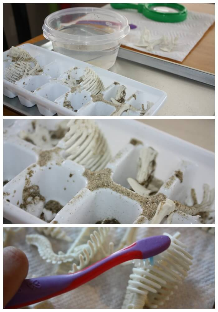 Fizzy Dinosaur Excavation Bone Cleaning with toothbrush