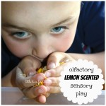 Lemon Scented Rice Sensory Play Smelling Activity