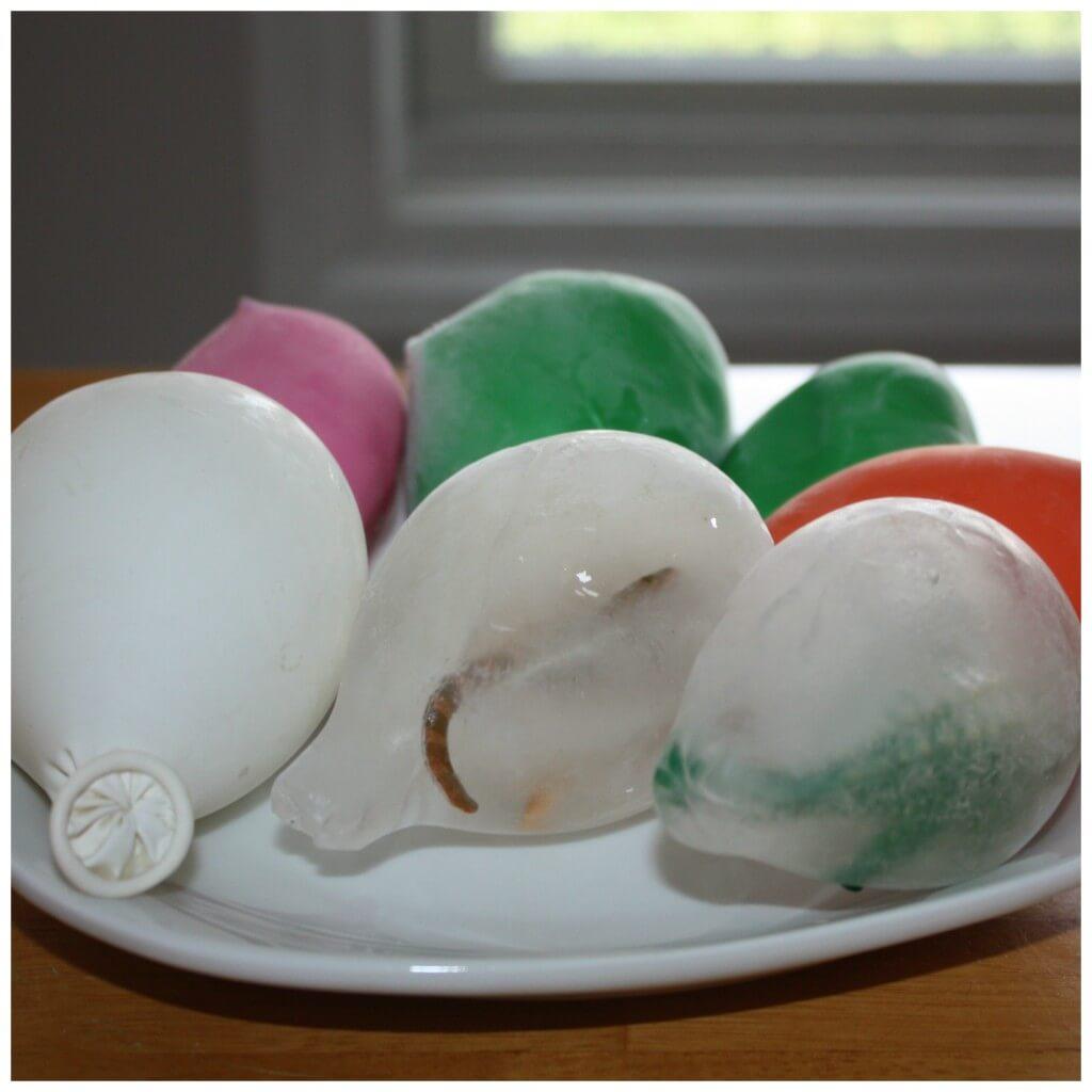 Dinosaur Eggs Frozen Still In Balloons