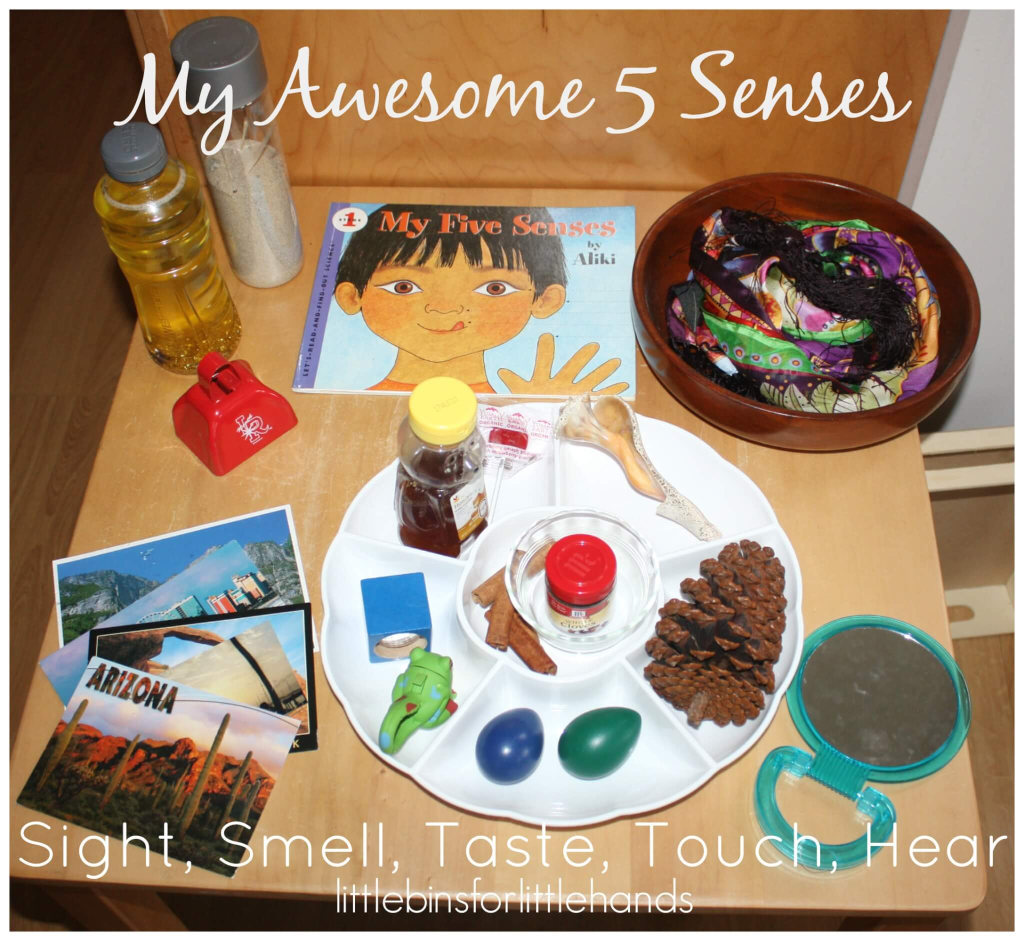 My Five Senses Preschool Activities, Lessons, and Printables