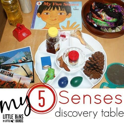 5 senses activity preschool learning about senses science. Black Bedroom Furniture Sets. Home Design Ideas