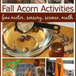 Acorn Fine Motor Fall Sensory Science Math Play Activity