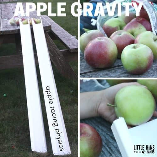 Explore physics with apples and learn about gravity, forces, energy, and more all while racing apples. This is a fun fall outdoor activity and STEM idea using real apples!