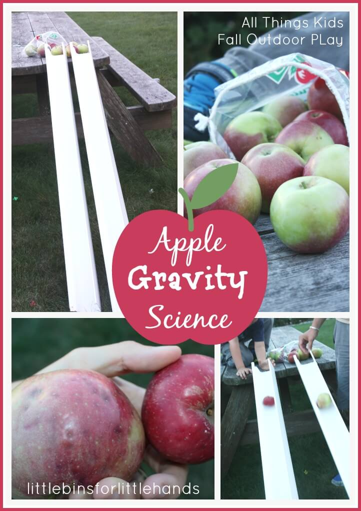 Apple Gravity Science Experiment And Outdoor Fall Apple Play