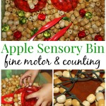 Apple Wooden Beads Sensory Bin Fine Motor And Counting Skills