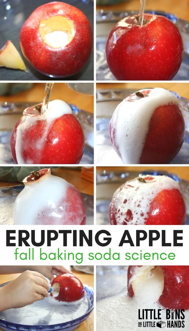Erupting apple science for fall STEM and baking soda science. Make an apple volcano for fall STEM