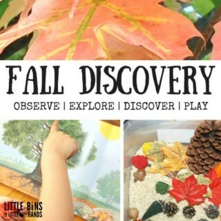 Fall Activity Discovery Table for Kids Leaves and Seasons