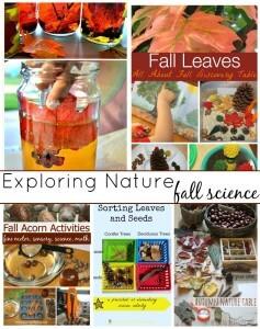 Fall science sensory exploring nature