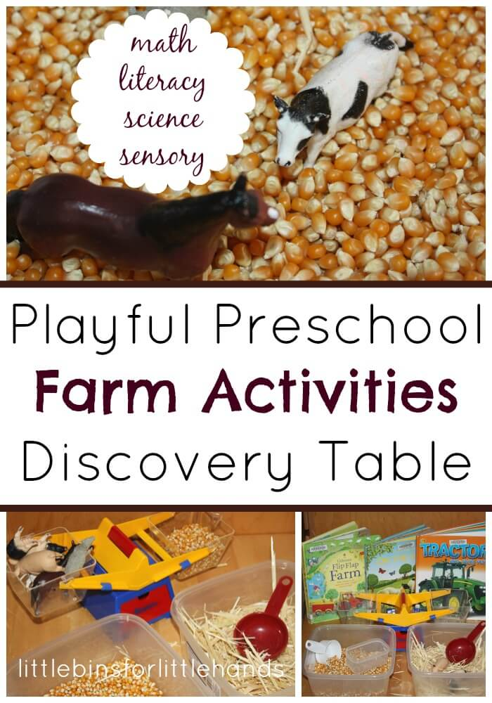 Preschool Farm Activities Discovery Table Math Literacy, Science Sensory