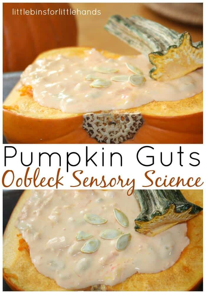 Pumpkin Oobleck Science Sensory Play with Pumpkin guts