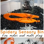 Spider sensory bin fine motor and math sensory play