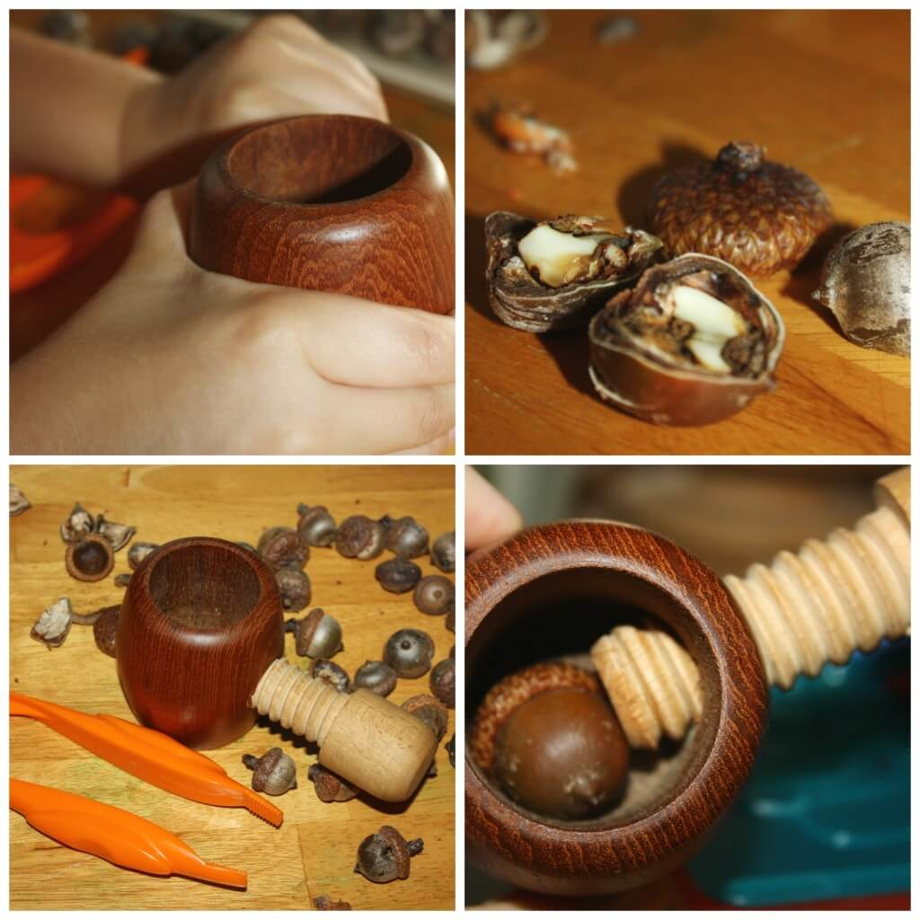 acorn fine motor play nut cracking practical life play