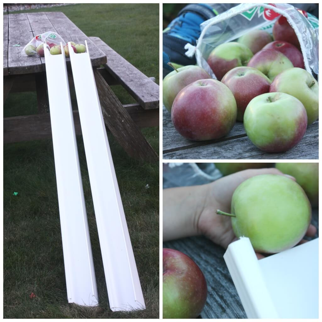 apple gravity experiment science play set up