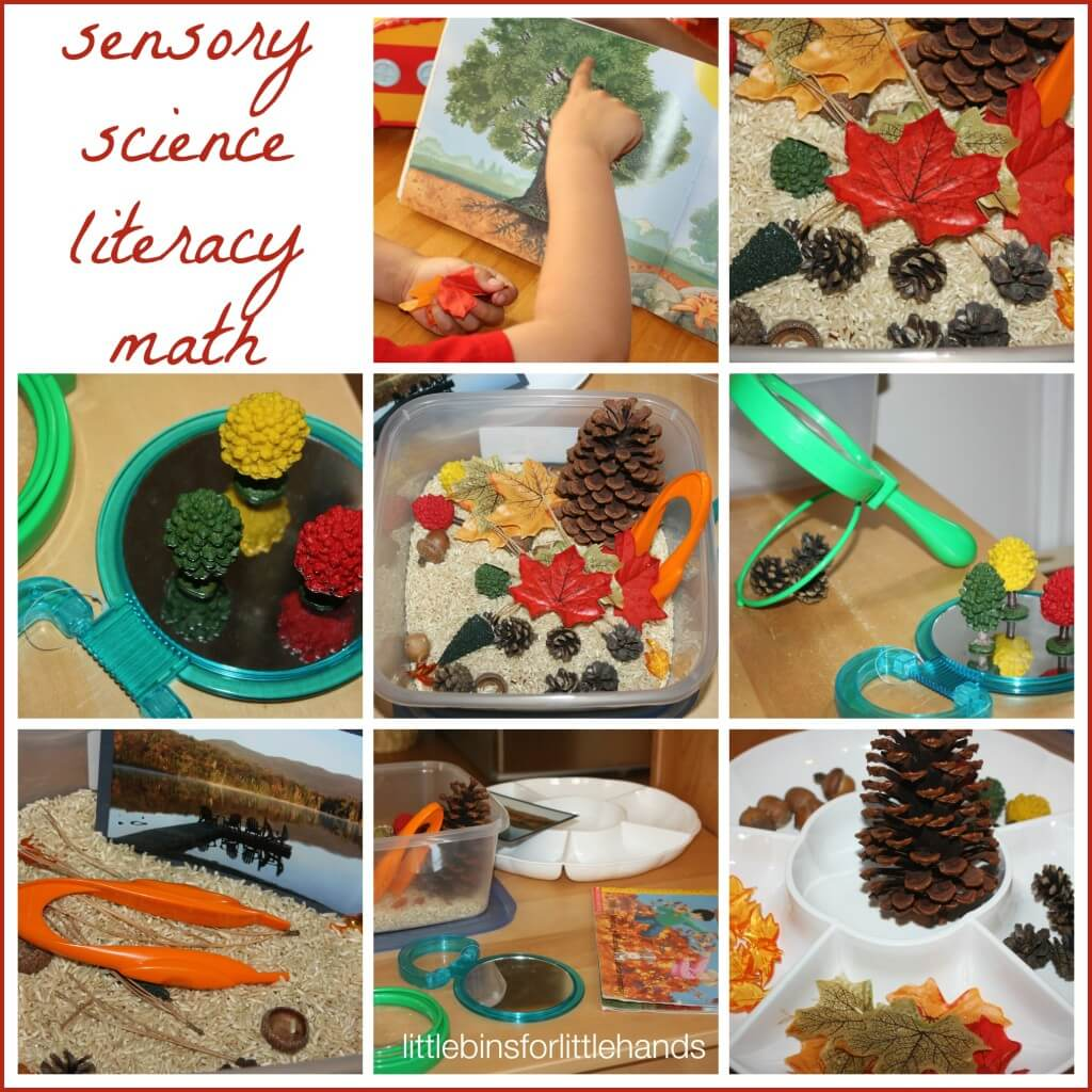 fall activity discovery table exploring and learning activities