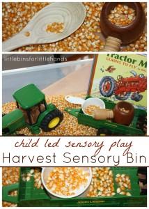 harvest sensory bin for Is Sensory Play Expensive child led