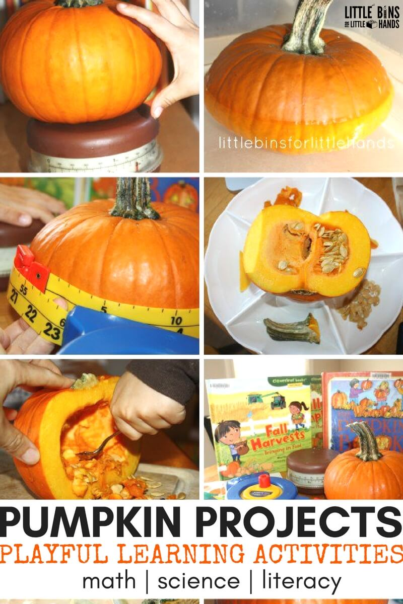 This is a graphic of Unusual Pumpkin Craft for Kindergarten