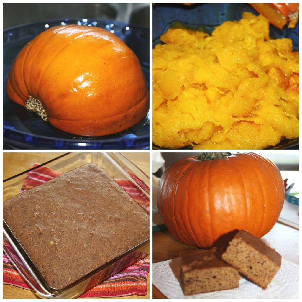 pumpkin activities for preschool