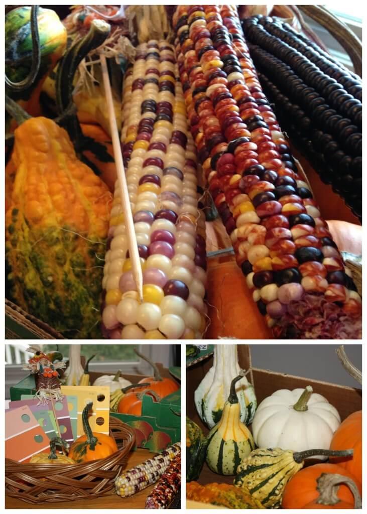 Exploring Fall Colors Playful Preschool Gourds