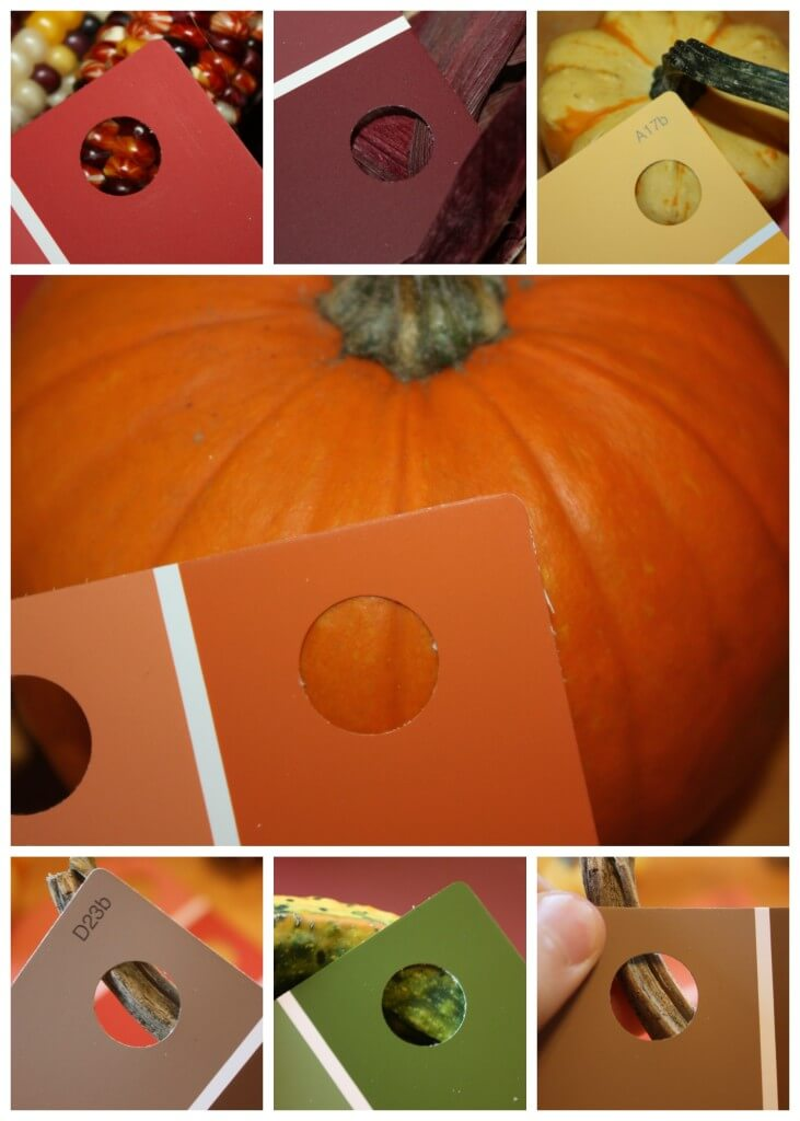 Exploring Fall Colors Using Paint Chip Cards To Match Colors Playful Preschool