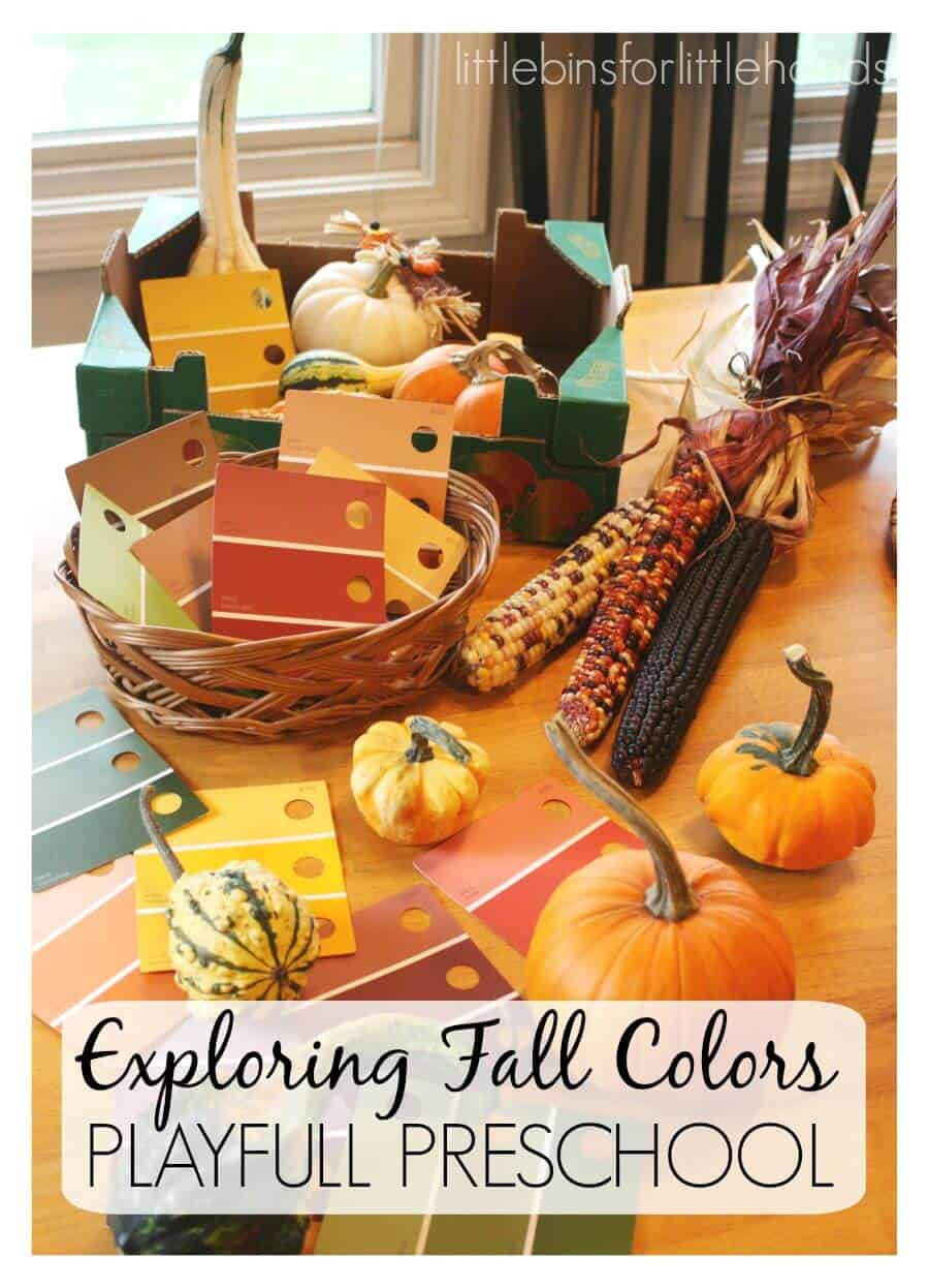 preschool fall theme exploring fall colors with gourds preschool fall activity 174