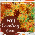 Fall Counting Game Fine Motor Sensory Play