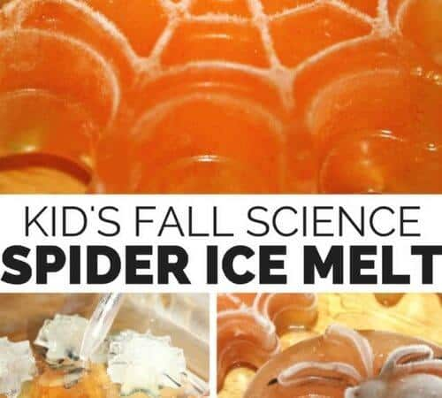 Halloween Spider Ice Melt Science Activity for Kids