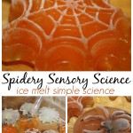 Spider Ice Melt Science Sensory Play