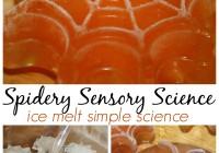 Spider Ice Melt Science Sensory Play