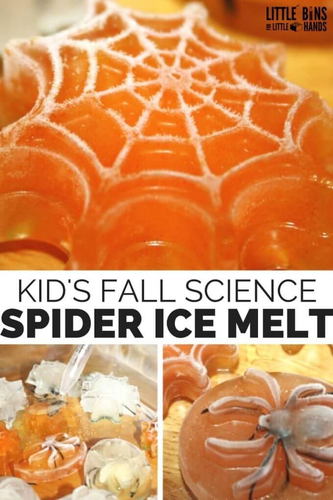 Spider Ice Melt Science Activity for Halloween STEM