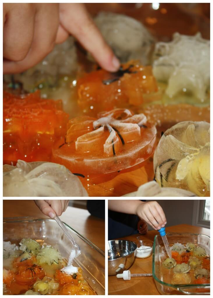 Spider Ice Science Melt Experimenting With Salt and Water