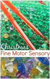 Christmas Fine Motor Sensory Play Water Beads Sensory Bin Mini Lights