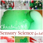 Christmas science side bar