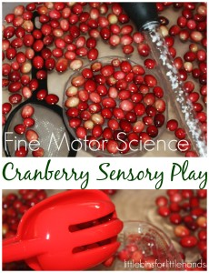 Thanksgiving Science And Stem Activities For Kids