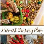 Fall Harvest Sensory Bin Play With Wooden Beads Gourds