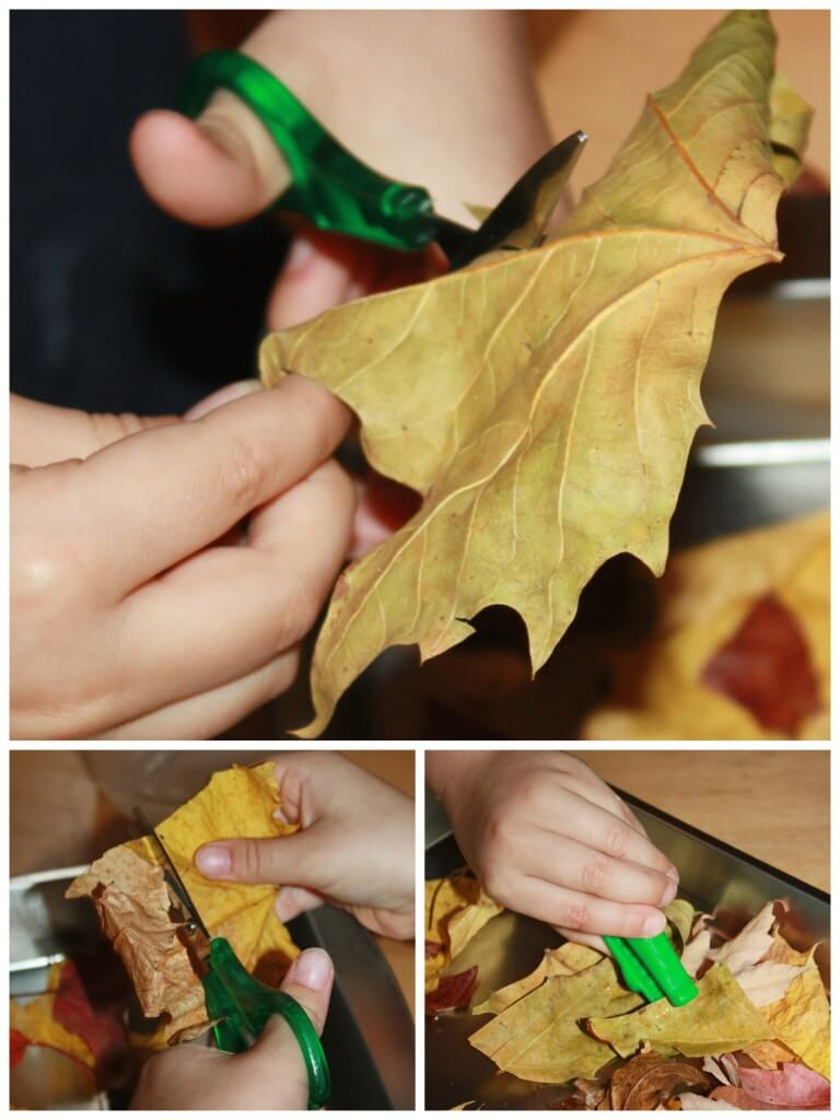 Leaf Activities Fine Motor Play Scissor Skills